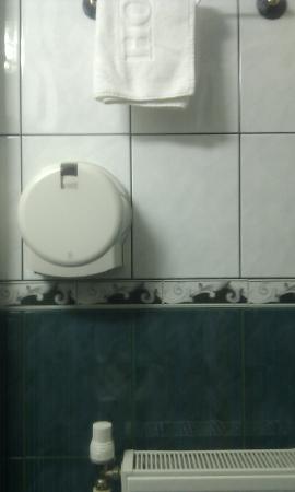 Helin Hotel: thin toilet paper in a disposal like in public toilets