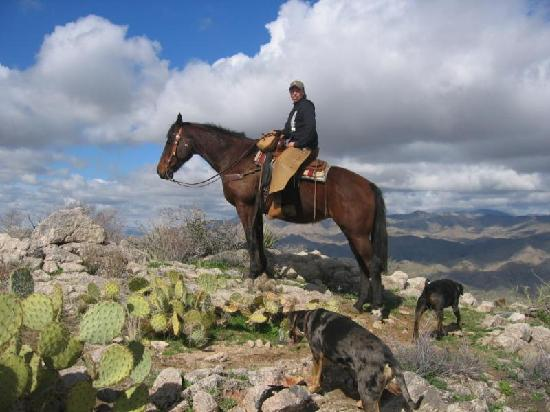 Williams Family Ranch : The Top of the World
