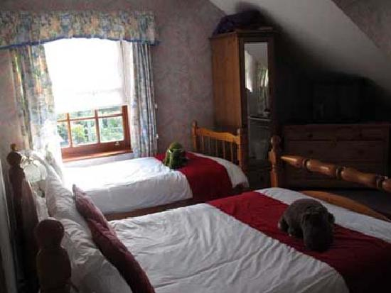 The Laurels Bed and Breakfast: Superior room