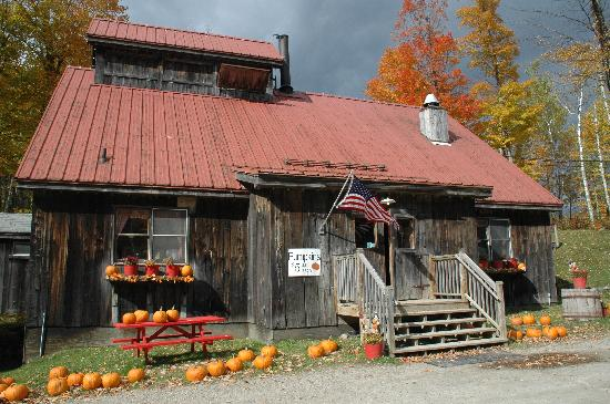 Applebutter Inn Bed and Breakfast: Pumpkin sale
