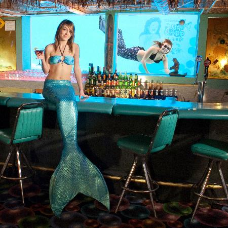 O'Haire Motor Inn: Our famous Sip 'n Dip Lounge with mermaids.