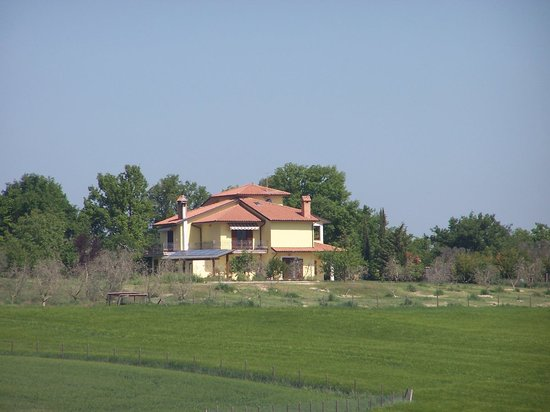 B&B La Casa Nell'Oliveto