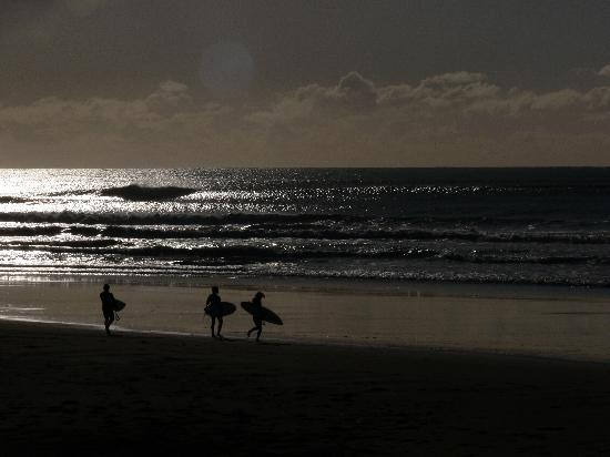 Oakura Beach Holiday Park : Great surf