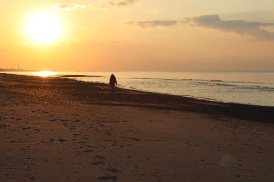 Dunes Shore Inn: Beach at sunset