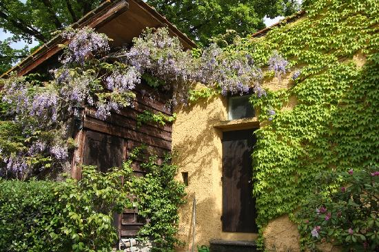 B&B Le Due Volpi: The beautiful house