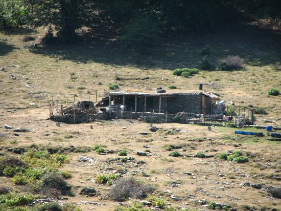 Corsica Rando Aventure : bergerie