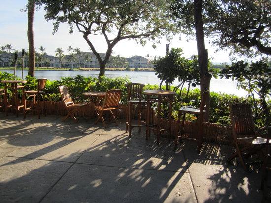 Jungle's Edge Coffee Company: Patio view