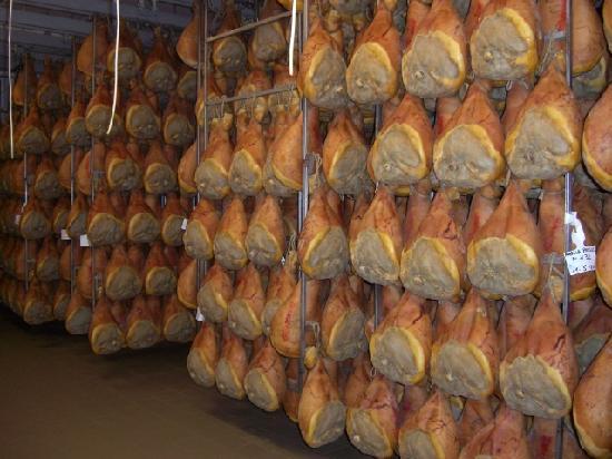 Emilia Delizia Food Tours: Parma Ham Aging