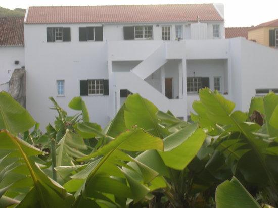Banana Manor: view of house and bananas