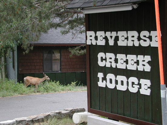 Reverse Creek Lodge