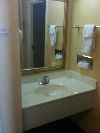 Americas Best Value Inn: Sink area