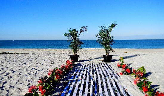 Suntan Terrace : the wedding spot