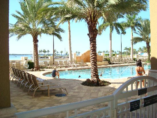 The Westin Cape Coral Resort At Marina Village: pool