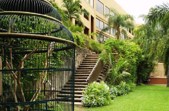 Hotel San Luis Lindavista: Jardin La Cascada