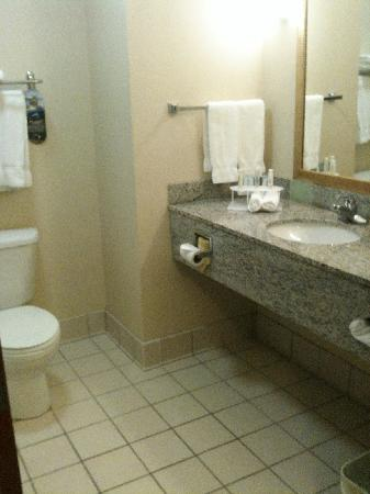 Holiday Inn Express Enterprise: bathroom