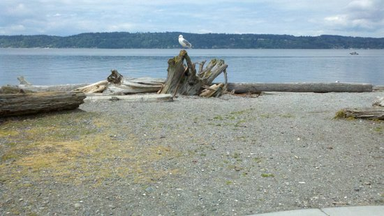 Mukilteo Lighthouse Beach