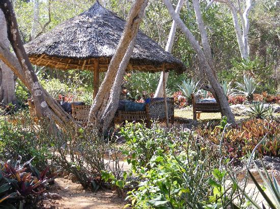 Kinazini Funzi Dhow Day Safaris: SIESTE IDEALE