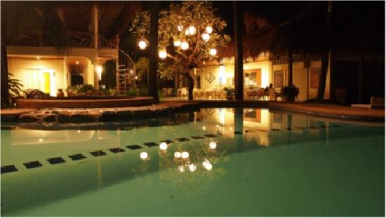 Mike's Dauin Beach Resort: Swimming Pool by night