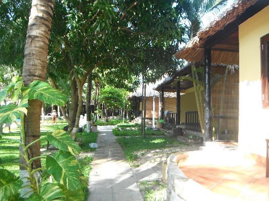 Green Coconut Resort: bungalow