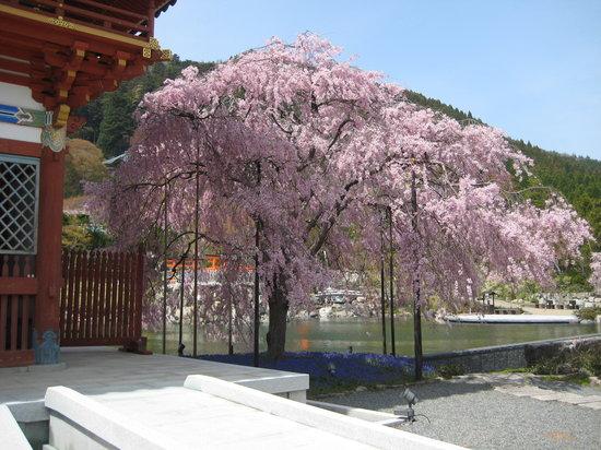 Kuil Katsuoji