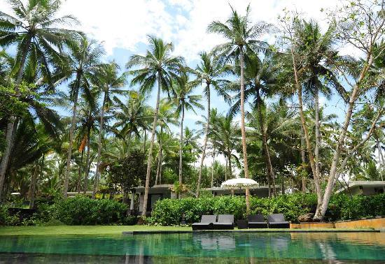 Kelapa Retreat Bali: lovely pool