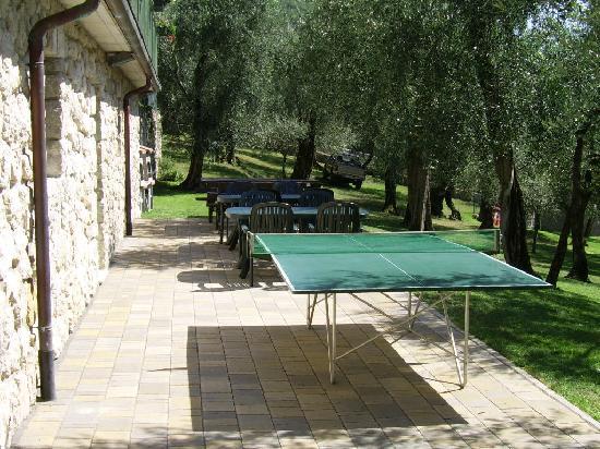 Appartamenti Elisabeth: Zona ping pong