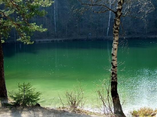 Zalieji ezerai (green lakes) in East side of Vilnius