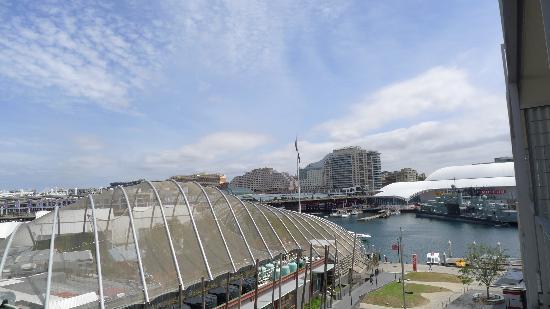 Adina Apartment Hotel Sydney Darling Harbour: Aquarium View