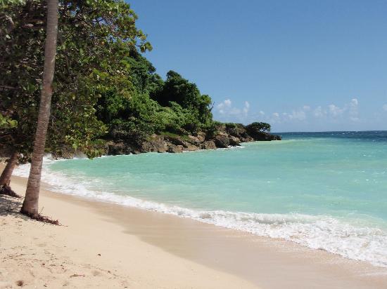 Luxury Bahia Principe Cayo Levantado: vue de la plage privée