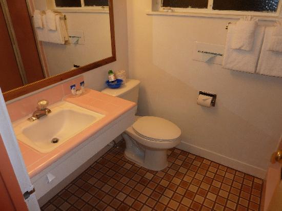 Americas Best Value Inn : Bathroom