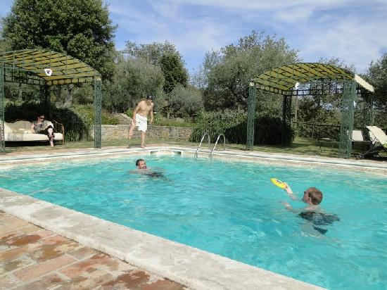 Villa San Crispolto: The Pool