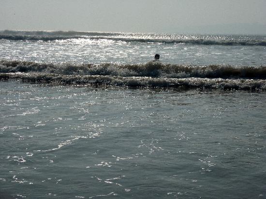 Essaouira Beach: Les vagues...
