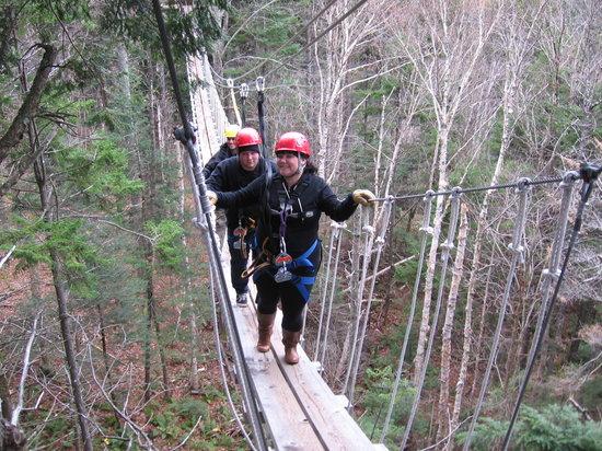 Bretton Woods: treetop bridge!