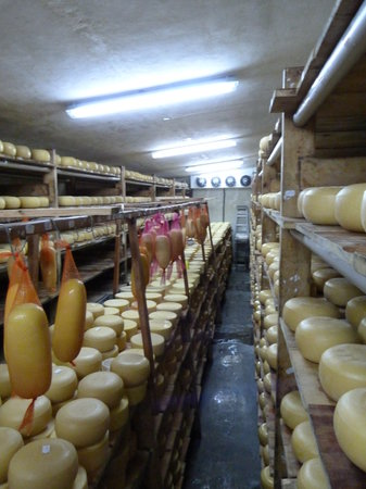 Brown's Cheese Factory & Farm