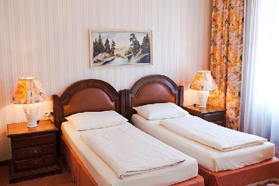Altwienerhof: a double room