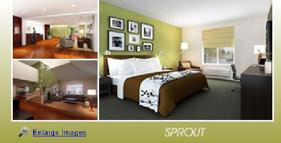 Sleep Inn at North Scottsdale Road: New Look