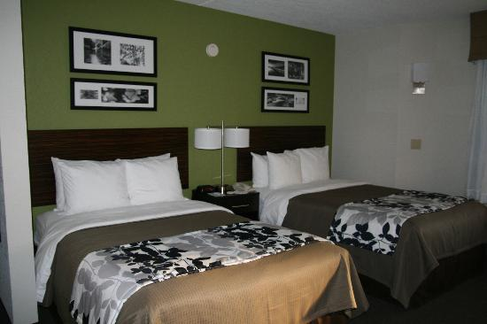 Sleep Inn at North Scottsdale Road: New Double Room