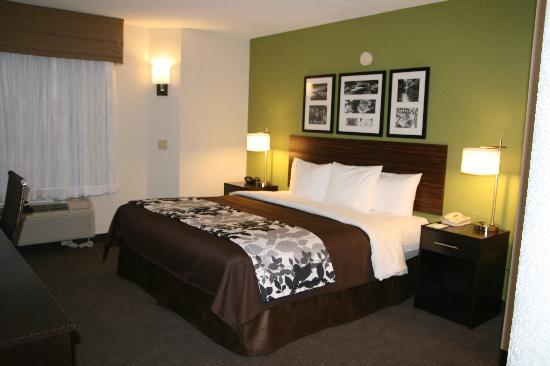 Sleep Inn at North Scottsdale Road : New King Room