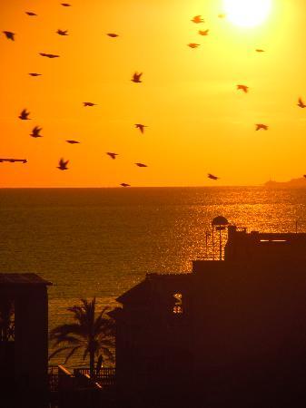 BQ Carmen Playa Hotel: Ausblick vom Balkon Richtung Strand.......