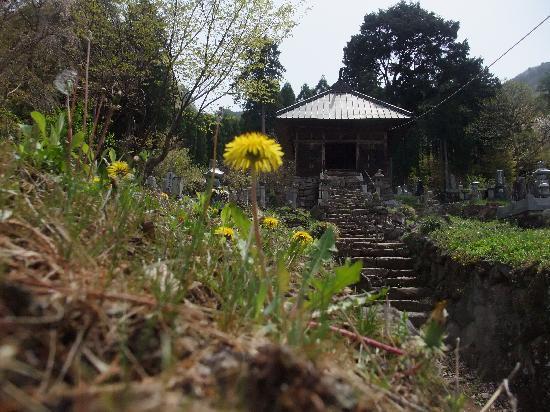 Ganshoin Temple: 福島正則の墓