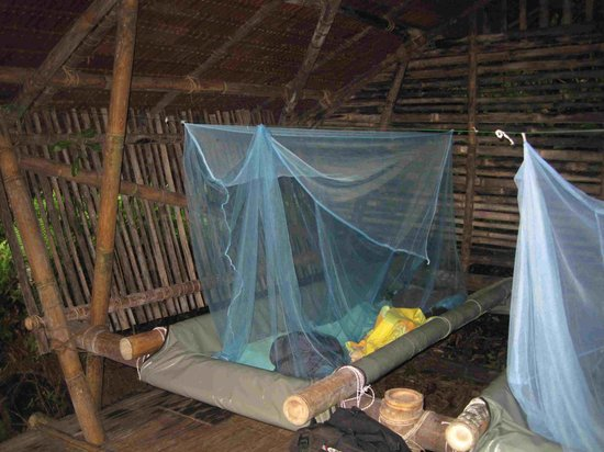 Lupa Masa Rainforest Camp: Accommodation