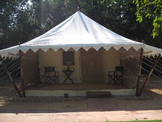 Sher Bagh : Our tent