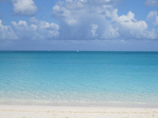 Grace Bay: so clear and warm!