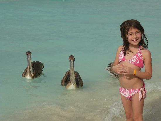 Varadero Beach: Hello lil girl :)