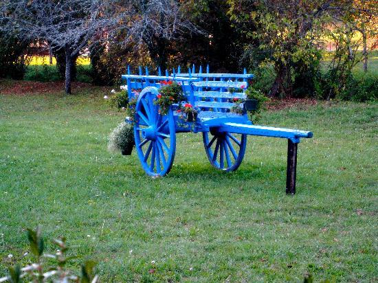 Le Moulin De Mitou : An old horse cart in the front garden