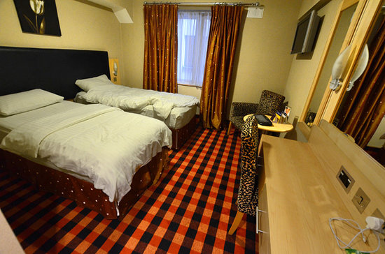 BEST WESTERN PLUS Academy Plaza Hotel: Standard twin room