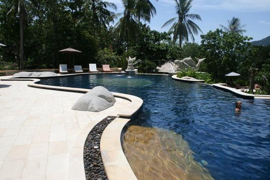 Sensi Paradise pool.