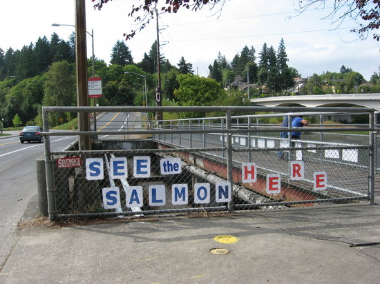 Olympia, WA: Look for the signs on the bridge