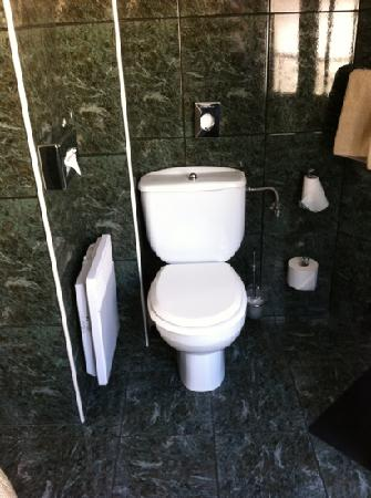 Hotel Alcyon: bagno 202