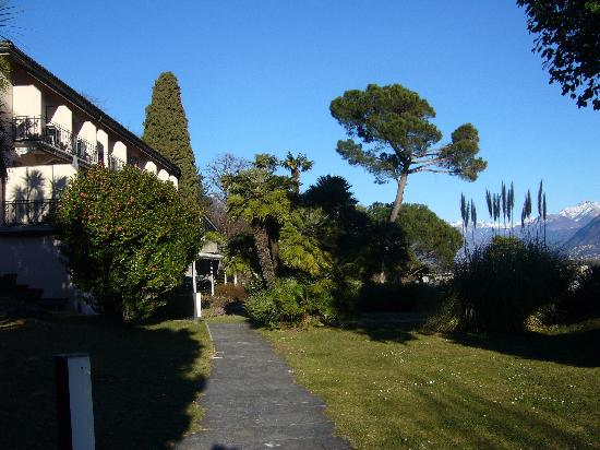 Hotel Collinetta